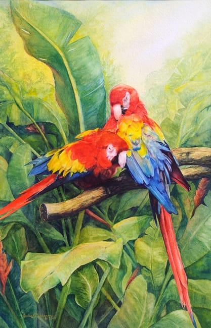 "JANICE DUCHARME, ""Preening Parrots"""